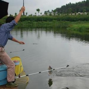 台钓遛鱼必威体育直播客户端下载分析