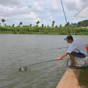台钓环境台钓特征以及台钓优缺点分析